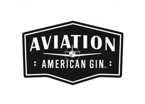 aviationgin