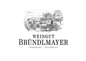 _0096_logo_brundlmayer