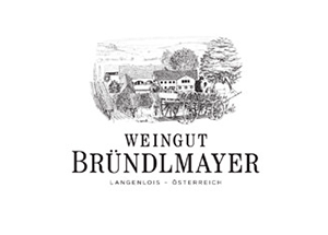 _0096_logo_brundlmayer