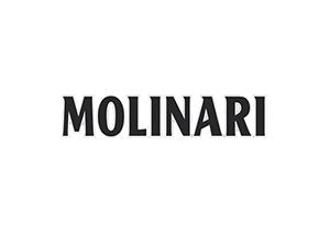 _0037_logo_molinari